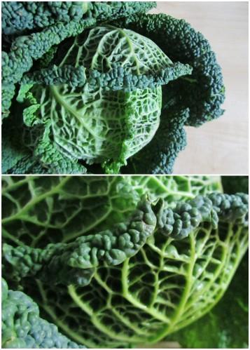 cabbage bulgur casserole